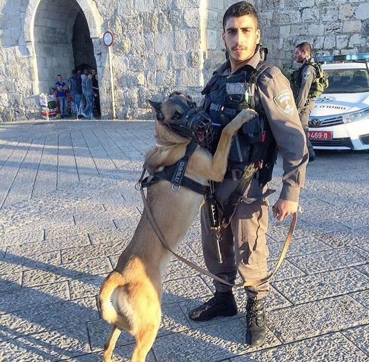 HERO Best Friends Israel